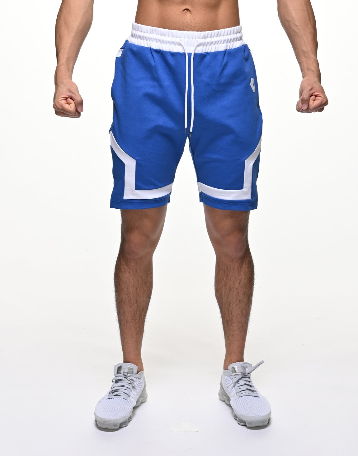 <img class='new_mark_img1' src='https://img.shop-pro.jp/img/new/icons55.gif' style='border:none;display:inline;margin:0px;padding:0px;width:auto;' />CRONOS BACK LOGO SHORTS【BLUE】