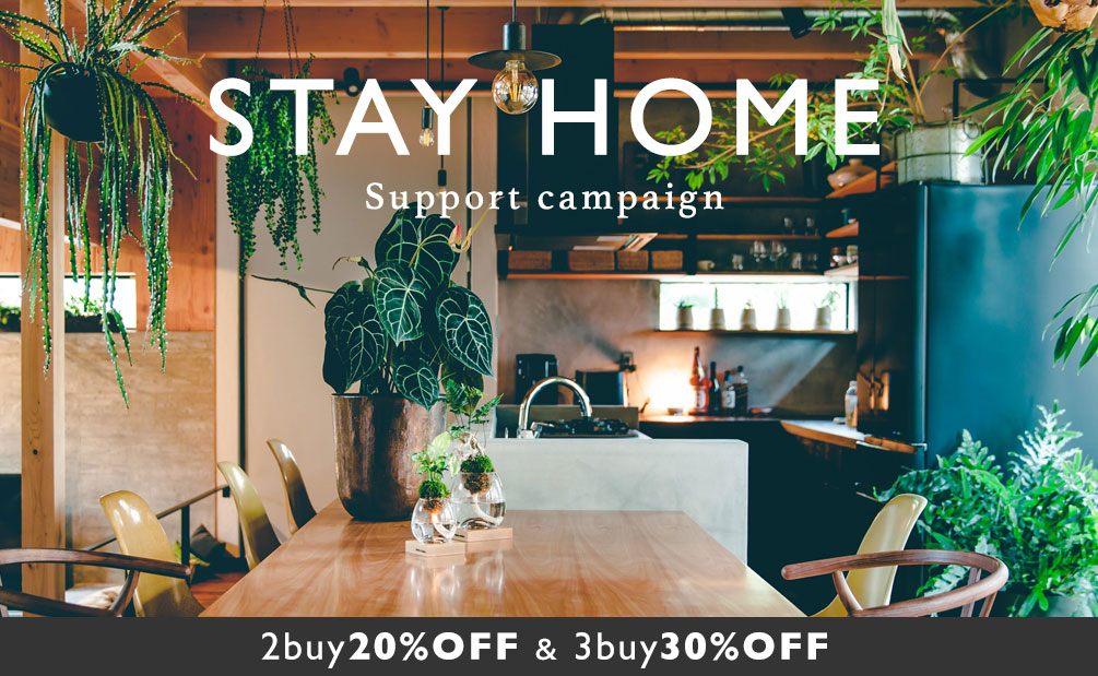 STAY HOME 応援キャンペーン