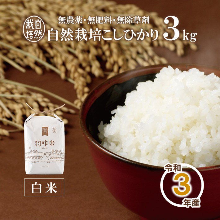 自然栽培米 こしひかり<令和1年産>羽咋米 3kg 玄米/白米