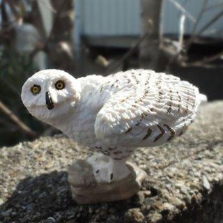 シロフクロウ ミニフィギュア Snowy Owl