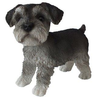 ミニチュア シュナウザー フィギュア/小犬の置物 Miniature Schnauzer figurine Dog Statue
