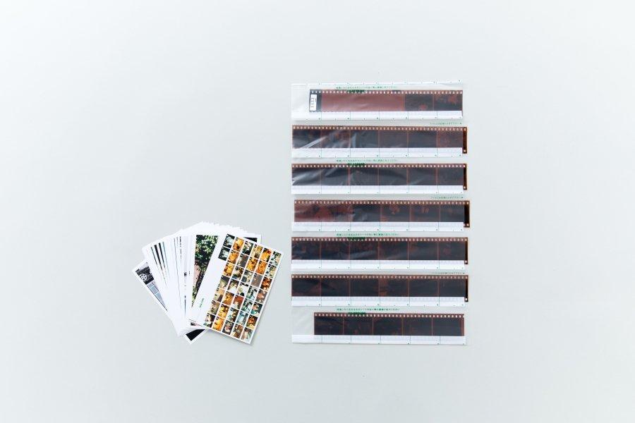 【35mm・36枚撮】カラーネガ現像・プリント・データCD