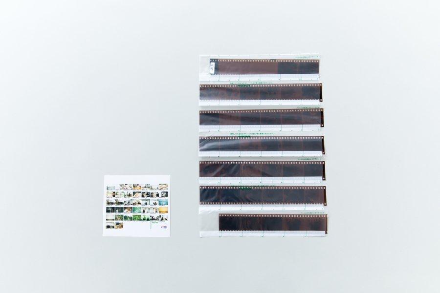 カラーネガ現像・データCD(35mm / 120mm 共通)