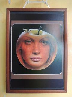 1972 Sam Haskins Poster �