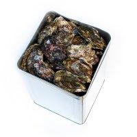 牡蠣一斗缶(80個〜100個入り)