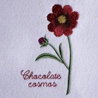 ワンコイン・デザインPack112(チョコレートコスモス  3種類)刺繍データ