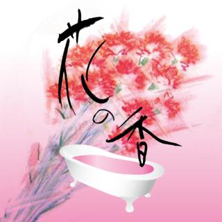 花の香 カーネーション 16kg [受注生産品]