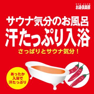 お湯倶楽部 汗たっぷり入浴 16kg [受注生産品]