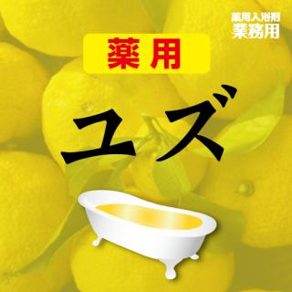 薬用入浴剤 ユズの香 1kg×10