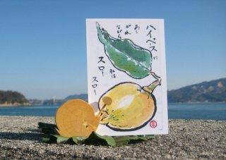 カタツムリのハガキ立て 〜みかんの木のクラフトシリーズ〜
