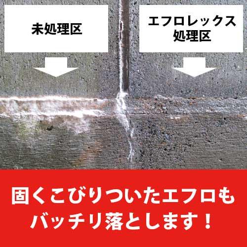 buy popular 3ada5 79078 エフロレックス 1L 最安販売【エフロ(白華)専用除去剤】