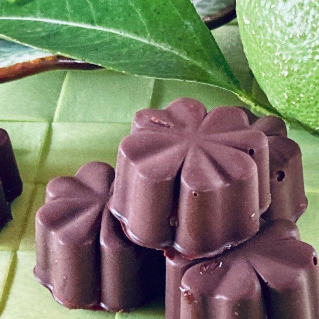 ギフトにも嬉しい自然食品♪オーガニックチョコ100%使用ミニチョコ<有機レモン>(4個入り)