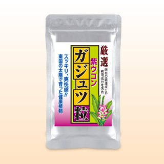厳選ガジュツ粒(紫ウコン)(240粒)