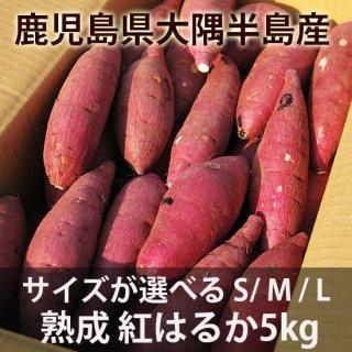 鹿児島の熟成 紅はるか5kg サイズが選べるS/M/L 送料無料商品