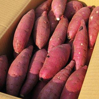鹿児島の熟成紅はるか10kg サイズが選べるS/M/L 送料無料商品