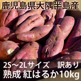 鹿児島の熟成紅はるか10kg 訳あり