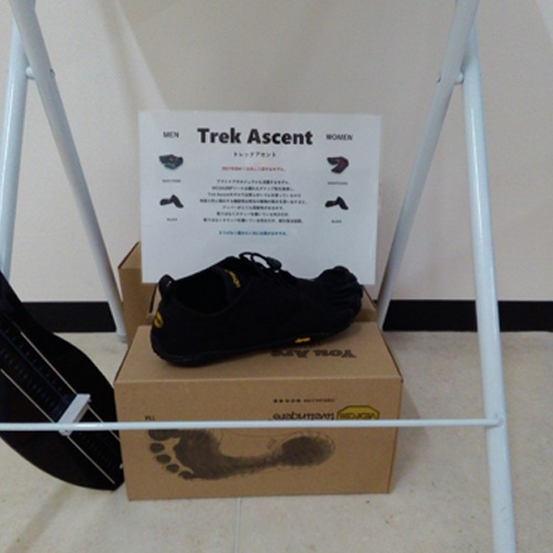 trek ascent