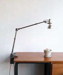 Lumina クランプランプ[DY]