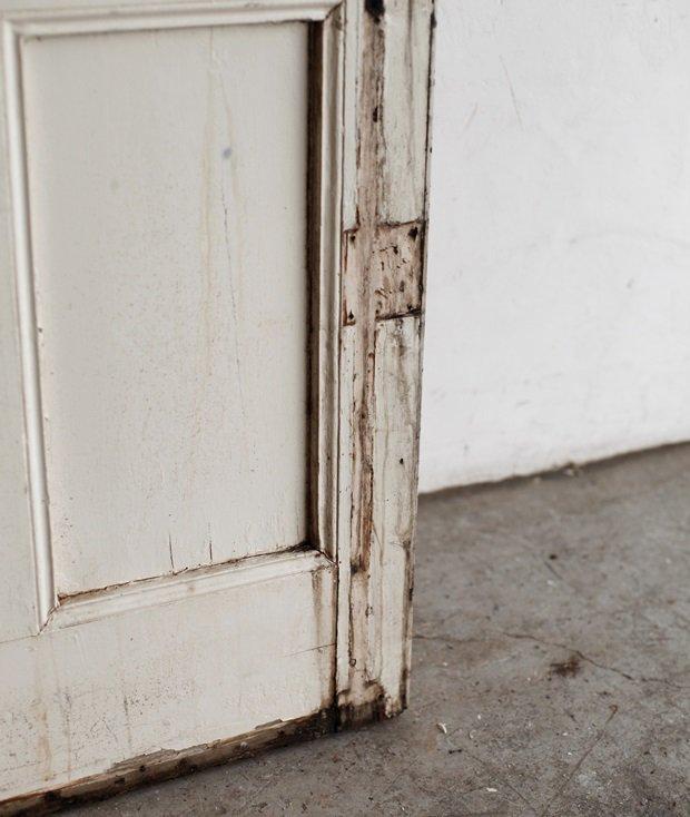 Door[AY]