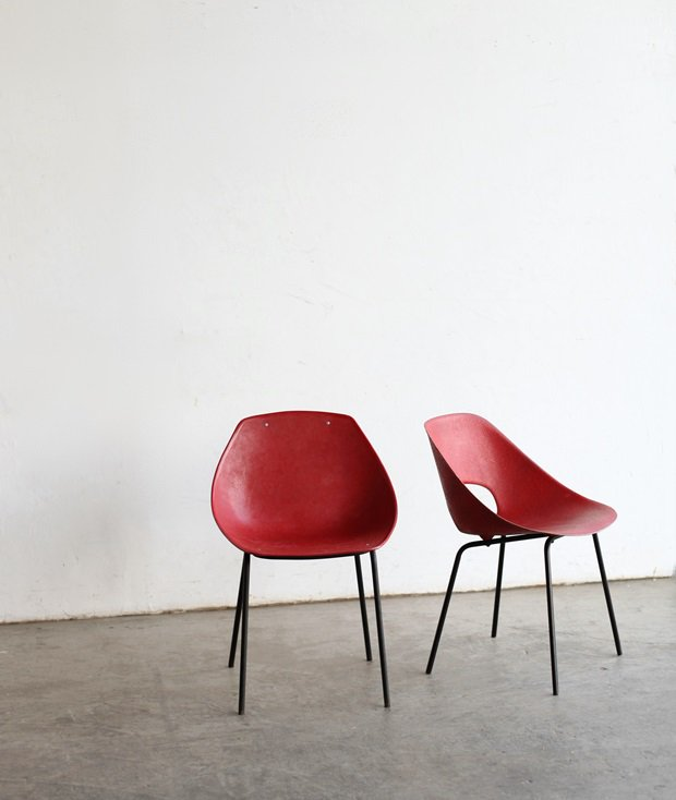 Tulip chair / Pierre Guariche[DY]