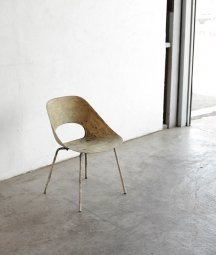 Pierre Guariche / Tulip chair
