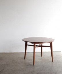 dining table [LY]