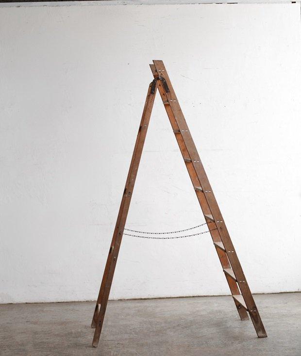 ladder step