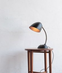 desk lamp / E.K. Cole [LY]