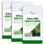 日本山人参 酵素 約1か月分×3袋 M-001-3