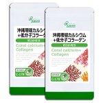 沖縄珊瑚カルシウム+低分子コラーゲン 約3か月分×2袋 C-178-2