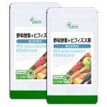野草酵素+ビフィズス菌 約3か月分×2袋 C-230-2 (旧商品名:野草酵素&乳酸菌)
