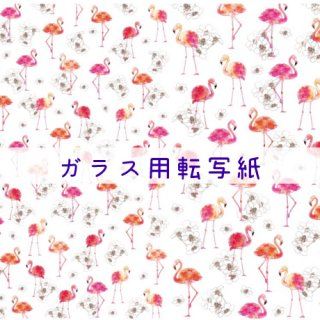 <img class='new_mark_img1' src='https://img.shop-pro.jp/img/new/icons1.gif' style='border:none;display:inline;margin:0px;padding:0px;width:auto;' />◇ガラス用◇flamingo