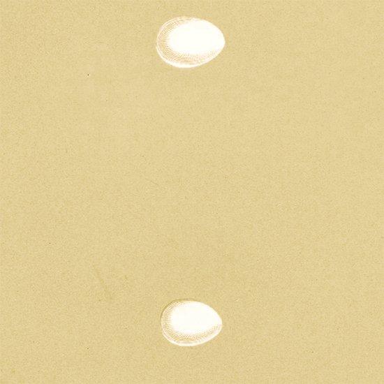 アンティークプリント イワツバメの卵