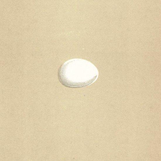 アンティークプリント キツツキの卵
