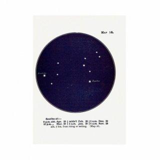 アンティークプリント 天文学・星座(しし座MAP16)