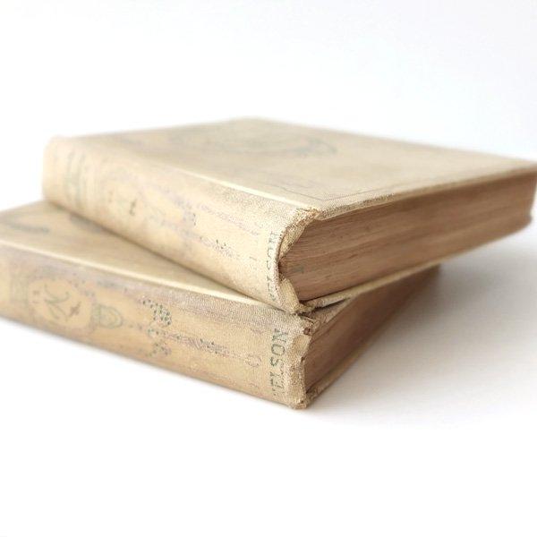 シャビーなアンティークブックセット(2冊)