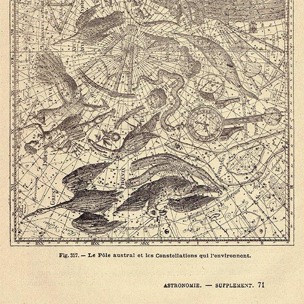 【天文学】南極とその周りの星座たちのアンティークプリント 0042