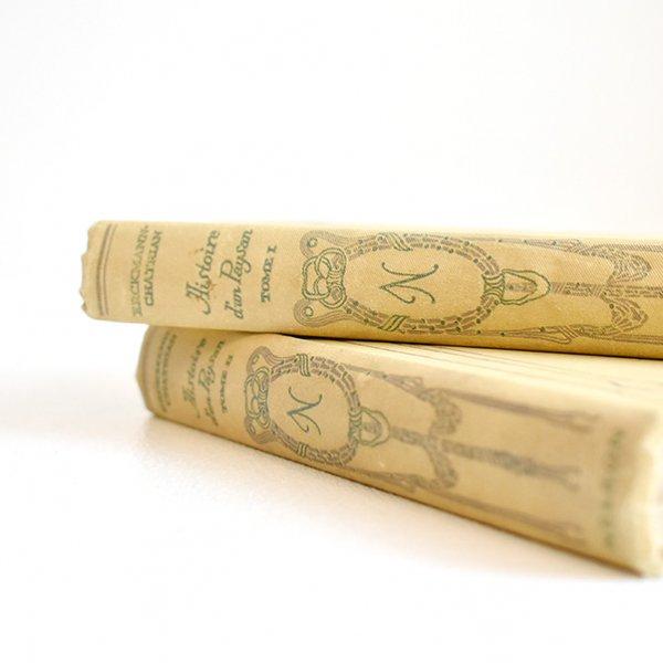 ネルソン(NELSON)洋書(古書) フレンチアンティークブックセット(2冊)015