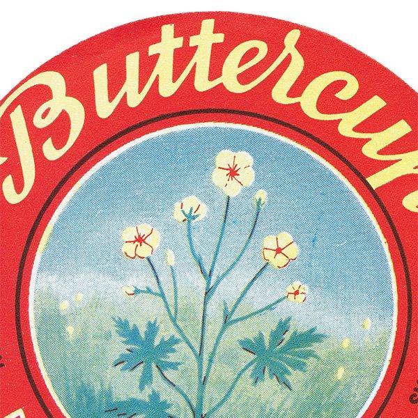 デンマークのヴィンテージチーズラベル(Buttercup) 013