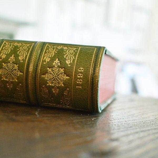 デンマーク 北欧 アンティークブック 古い洋書 ディスプレイ025