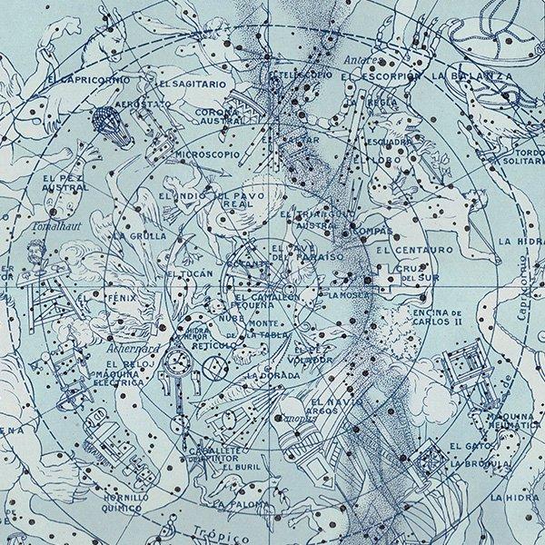 【天文学】南半球の星座のアンティークプリント 0043