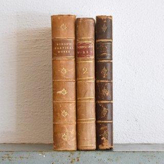 イギリス+フランス アンティークブック 古い洋書 3冊セット ディスプレイ045