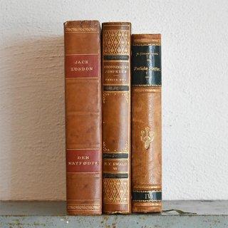 デンマーク 北欧 アンティークブック 古い洋書 3冊セット ディスプレイ059