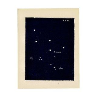 【天文学】星座RAM(牡羊座)アンティークプリント 0048