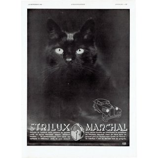 MARCHAL(マーシャル)1931年 黒猫 ヴィンテージ広告 0056<img class='new_mark_img2' src='https://img.shop-pro.jp/img/new/icons5.gif' style='border:none;display:inline;margin:0px;padding:0px;width:auto;' />