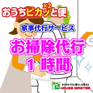お掃除代行サービス(スポット)