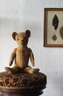 アンティークテディベア-antique teddy bear