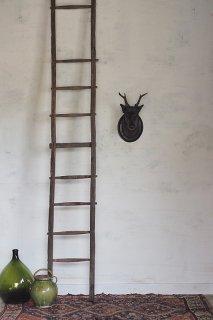 荒れすさむ梯子-antique wood ladder