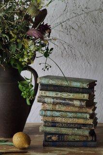 絢爛たる古書-antique french book