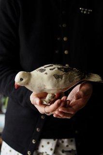 ポッポ、、啄む白鳩-antique porcelain pigeon objet